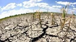 Récord temperatura global acercándose a 2 grados