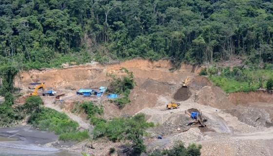 Fiebre del oro destruye las selvas sudamericanas