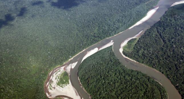 La selva amazónica se está secando