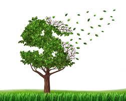 Economía verde, nuevo disfraz del neoliberalismo