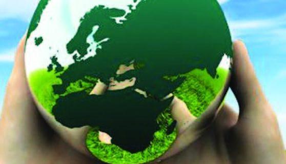 Ecología como necesidad universal