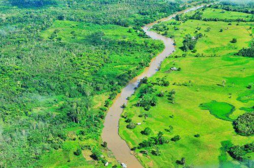 Continúa el debate sobre el paquetazo ambiental en Perú