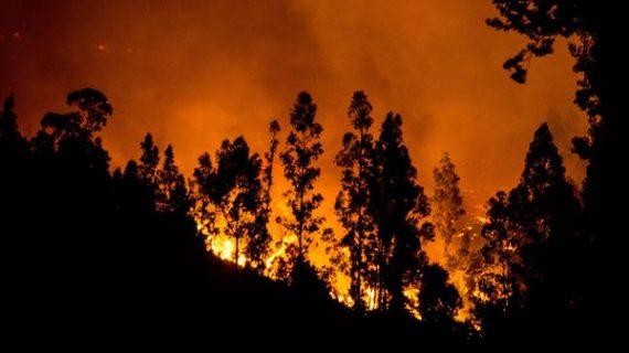 El incendio más destructivo en la historia reciente de Chile
