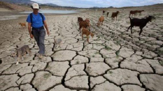 Nuevo informe de la Organización Meteorológica Mundial