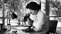 Rachel Carson, la mujer que inauguró el ecologismo contemporáneo