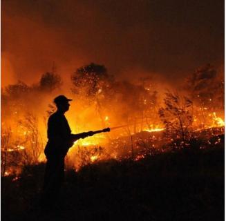 Los Naturaleza se quema y la política se agota