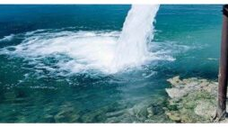 Propiedad, acceso y excedentes de los recursos naturales en Chile